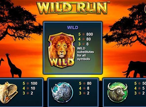 Таблица выплат в игровом аппарате Wild Run