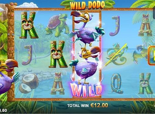 Призовая комбинация на линии в игровом автомате Wild Dodo