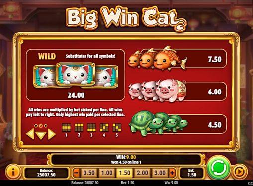 Таблица выплат в аппарате Big Win Cat