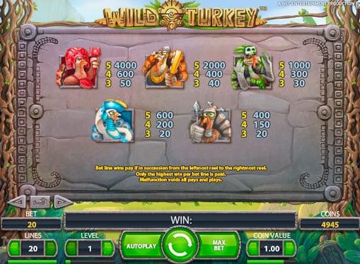 Коэффициенты выплат игры Wild Turkey